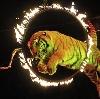 Цирки в Новочеркасске